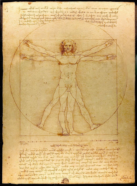 Графика. Леонардо да Винчи. Витрувианский человек