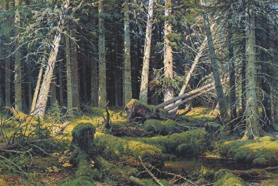 """Иван Шишкин. """"Бурелом"""", 1888"""